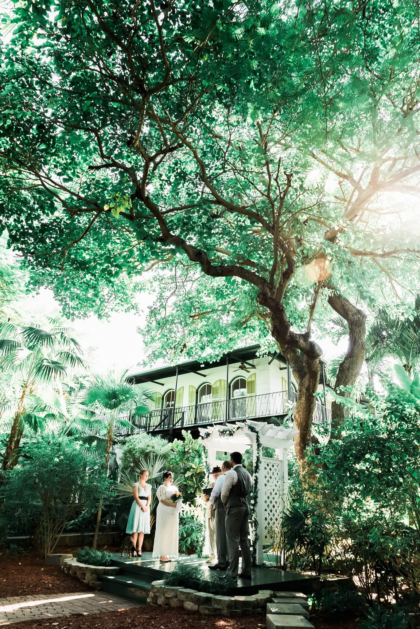 Becca and Leigh Hemingway Home Key West 154 - Becca & Leigh - Key West Wedding Photographer - Ernest Hemingway House