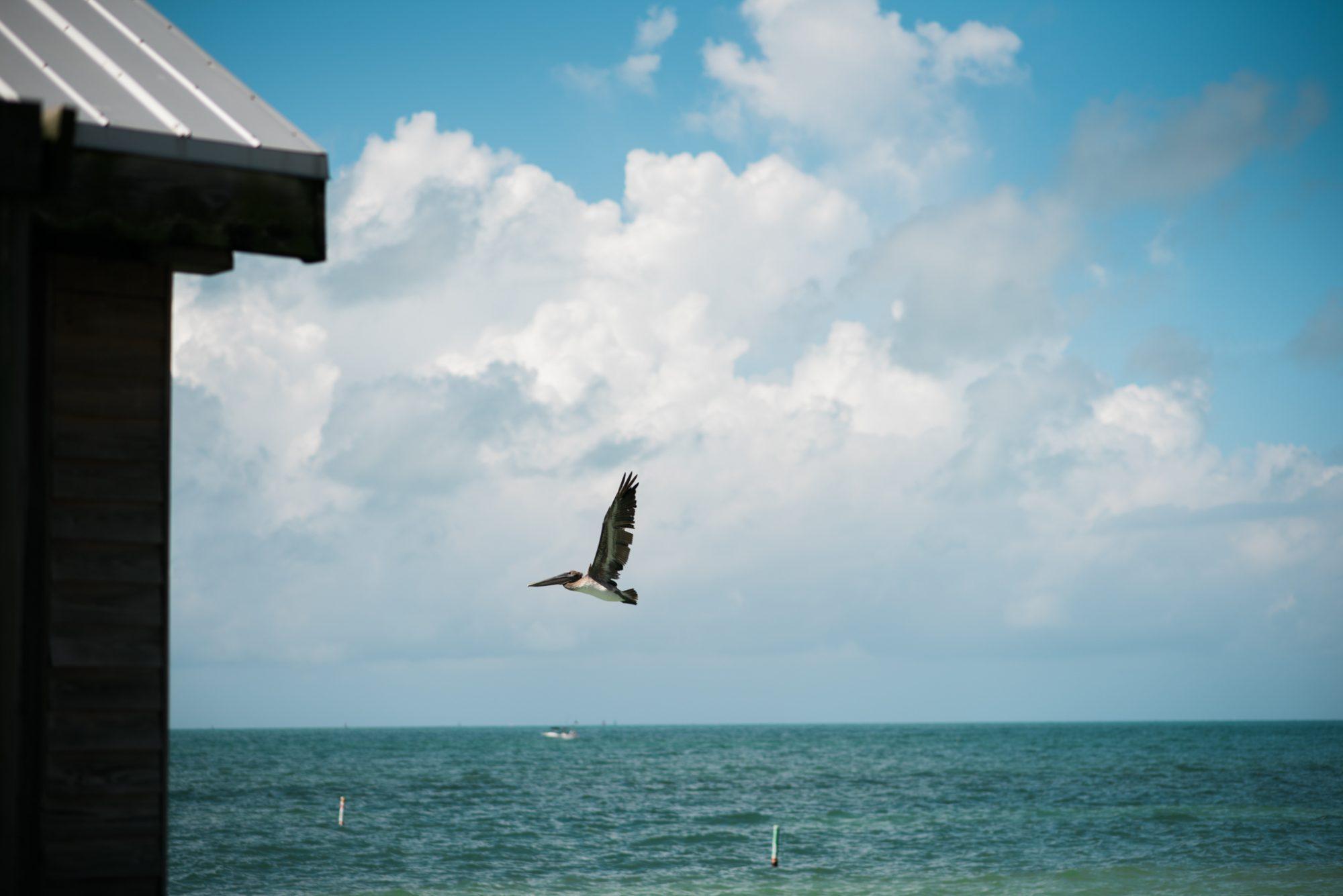 Stacey Jason Key West Wedding Photographer Reach Resort 26 - Stacy & Jason - Key West Wedding Photographer - Reach Resort