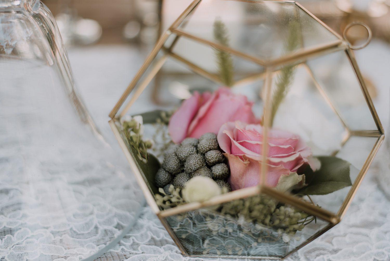 Hemingway_Home_Wedding_Jess_Ed-88 weddings wedding lifestyle key west florida keys %sitename