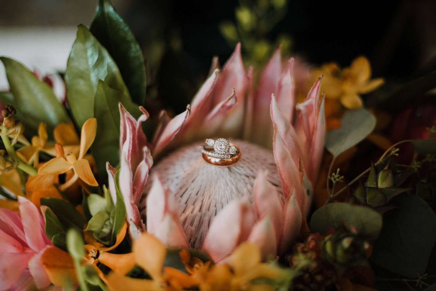 love in bloom wedding photographer key west