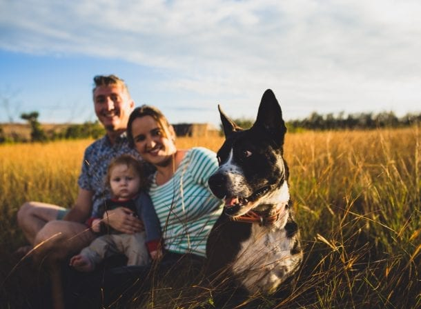 Family taking portraits with their Dogs in Asheville