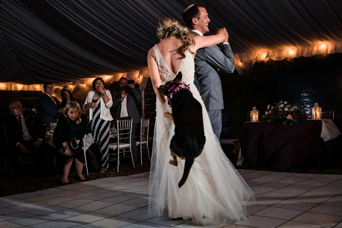 Bride and groom dance with their dog on reception dance floor at Shark Key in Key West.