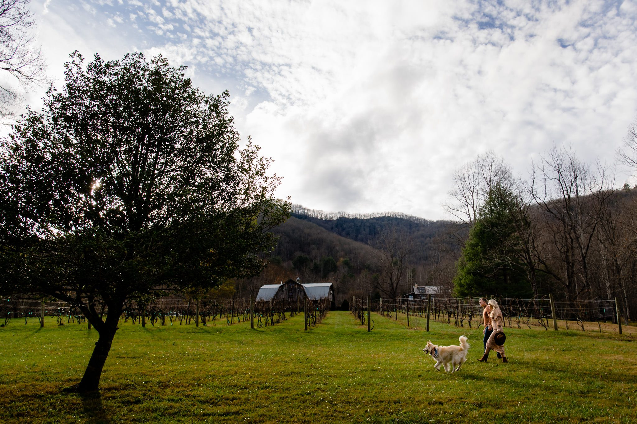 Engaged couple walking their dog on the grounds at betty creek in sylva nc.