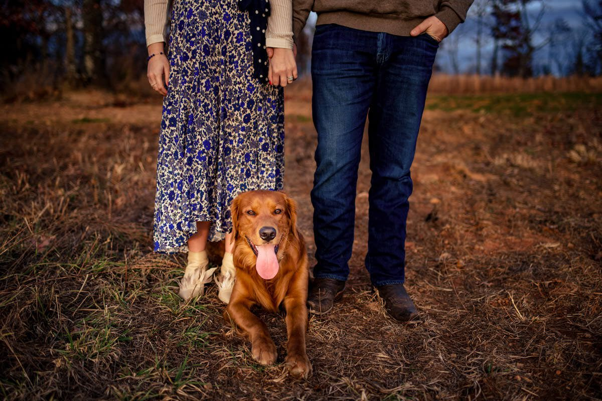 Engagement Couple Holding Hands with Their Adorable Dog