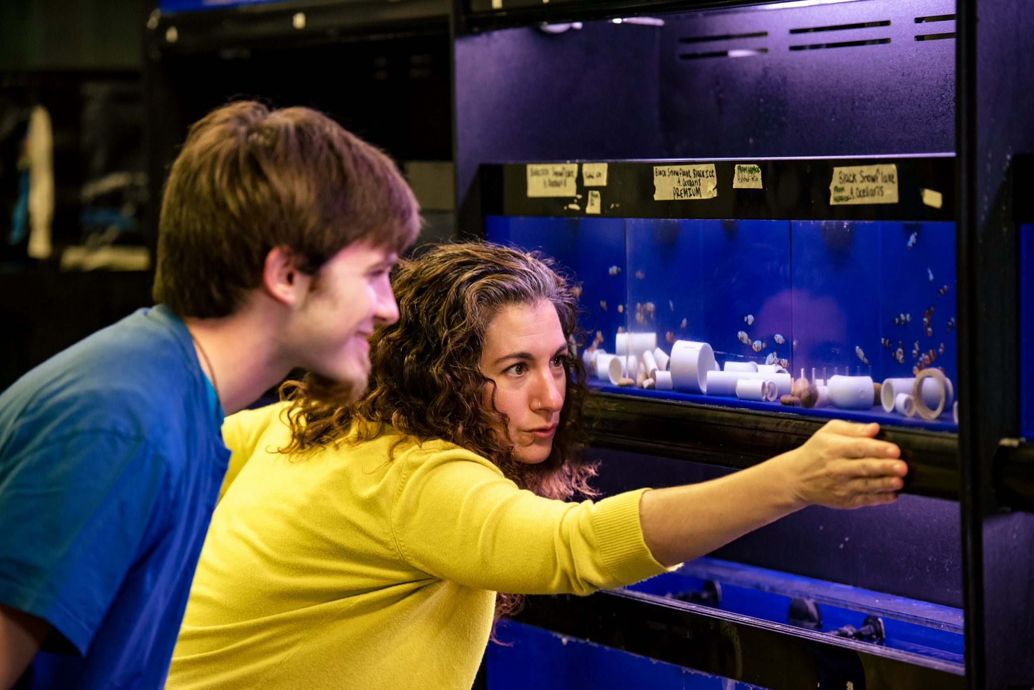 Professor showing a student an aquarium