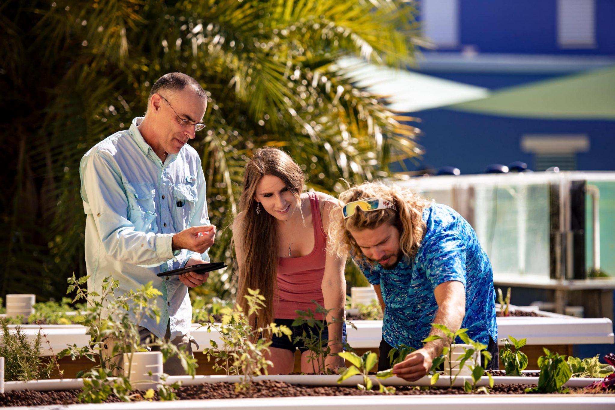 Professor showing students plant life