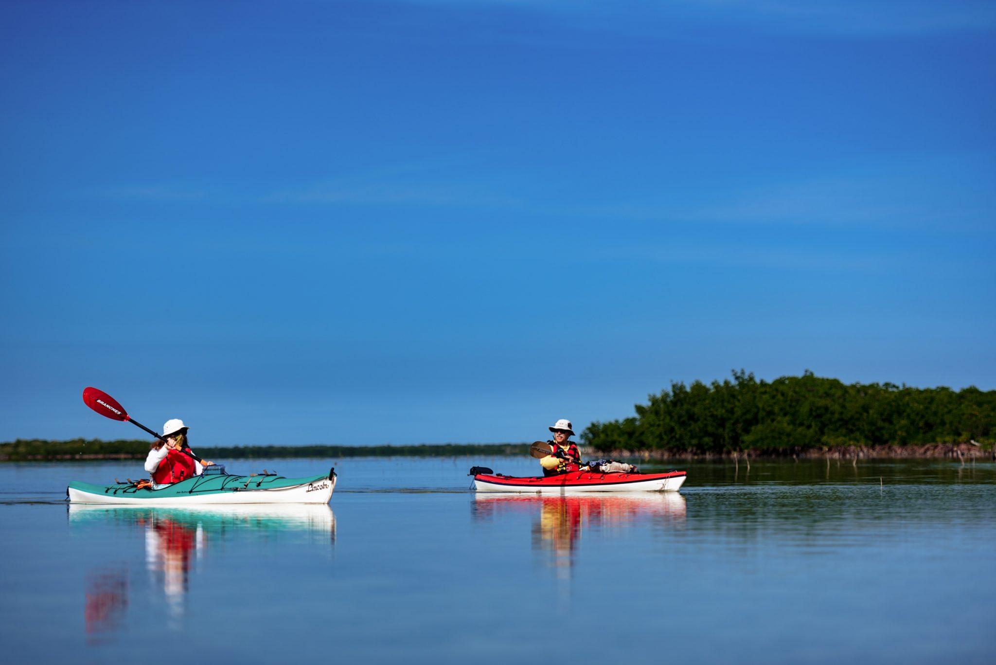 Two people kayaking on a serene lake